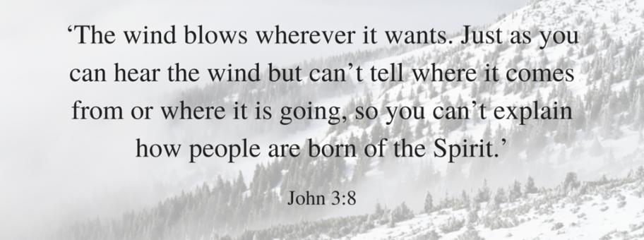 John 3:8