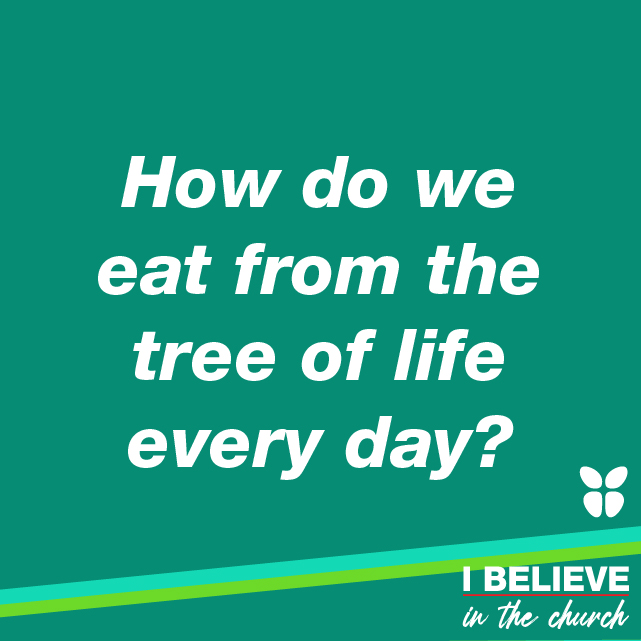 How do we eat from the tree of life every day?